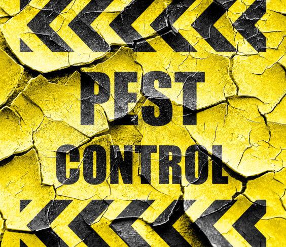 pest control text