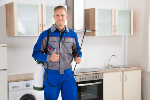 pest control worker with insecticide sprayer